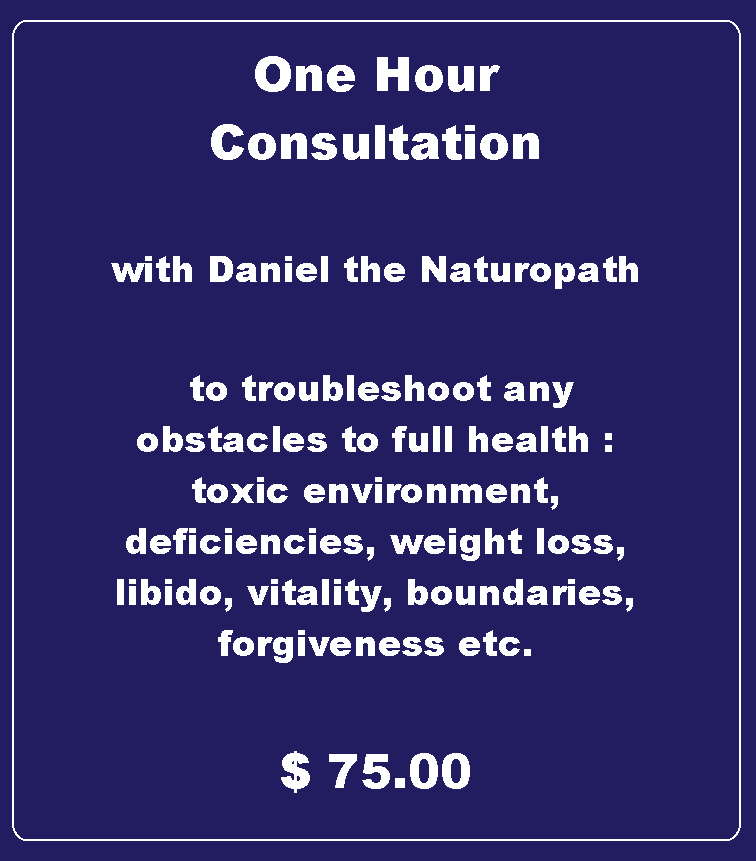 consultation by phone with daniel the naturopath